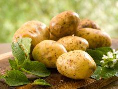 للإستفادة القصوى من البطاطس