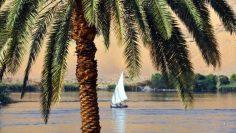 النيل يلفظ أنفاسه